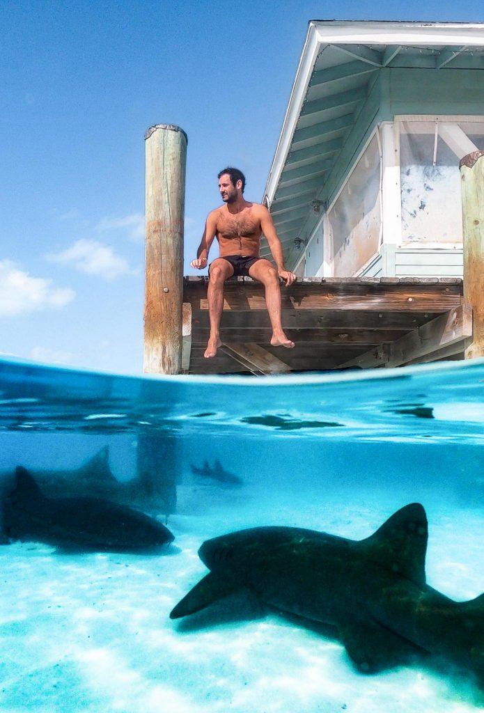Compass Cay Marina -Shark Exumas croisière Bahamas
