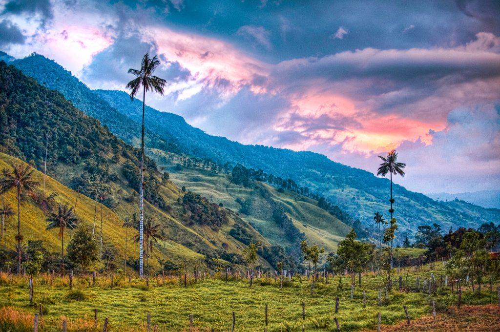 Vallée Cocora Colombia
