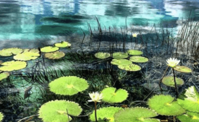 Bacalar Lagune Yucatan